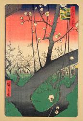131003-0030-OS - Plum Blossom