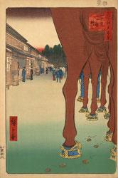 131004-0086.1-OS - Horses at Shinjuku