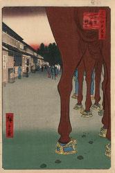 131004-0086.2-OS - Horses at Shinjuku