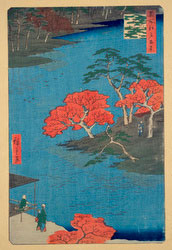 131004-0091-OS - Shrine Garden