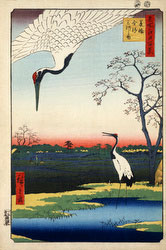 131004-0102.1-OS - Two Cranes