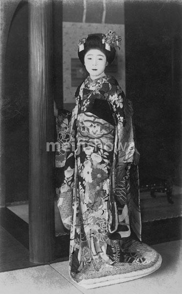 70301-0011 - Geisha