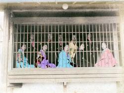 161215-0041 - Prostitutes on Display