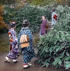 161217-0040 - Women Admiring Bamboo