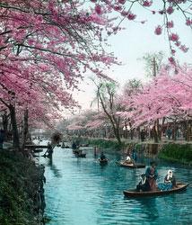 170201-0001 - Edogawa River