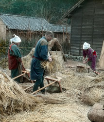 170201-0020 - Threshing Rice