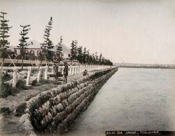 190102-0011-PP - Yokohama Seashore
