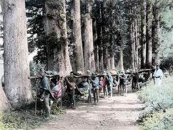 190102-0021-PP - Kago