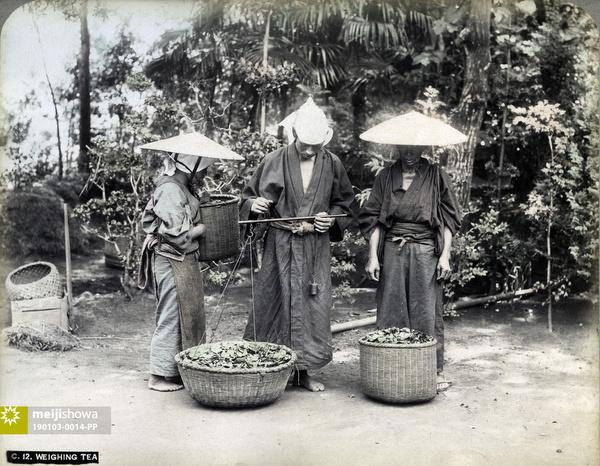 190103-0014-PP - Weighing Tea