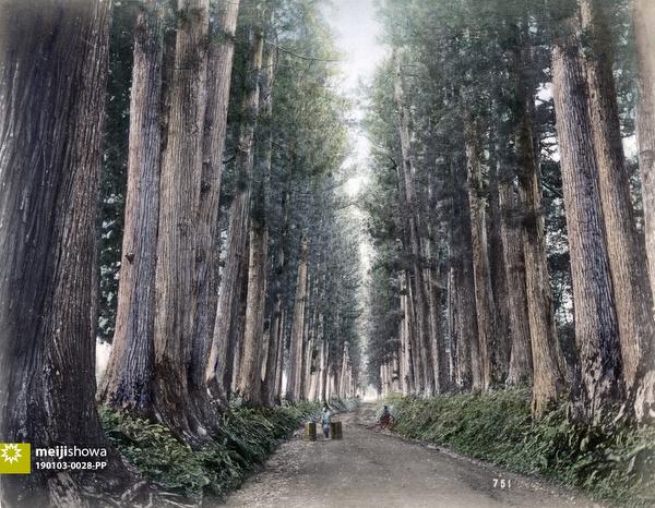 190103-0028-PP - Nikko Road