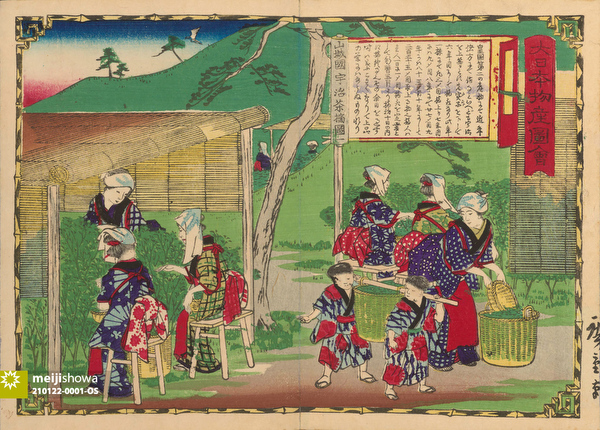 210122-0001-OS - Japanese Tea Pickers