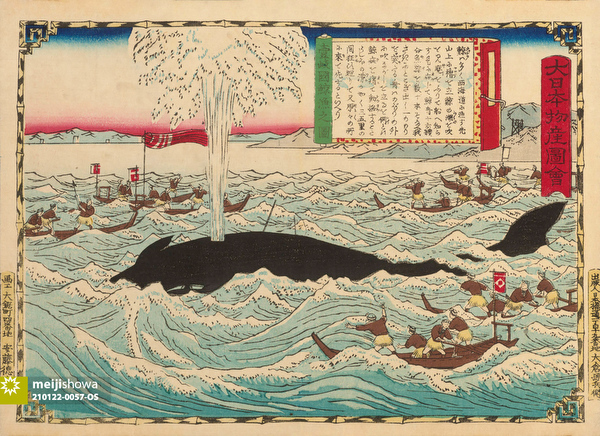 210122-0057-OS - Japanese Whaling