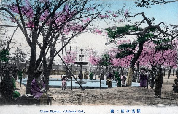 70330-0025 - Yokohama Park