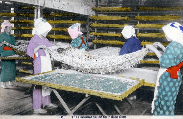 70425-0017 - Silk Farming