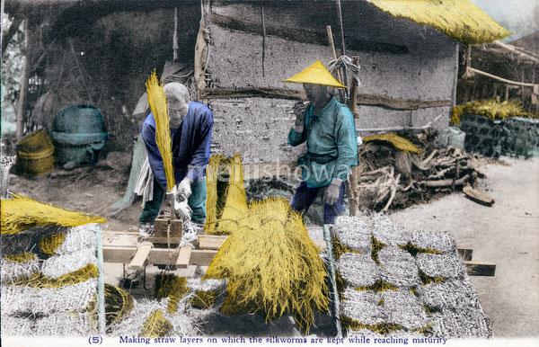 70425-0020 - Silk Farming